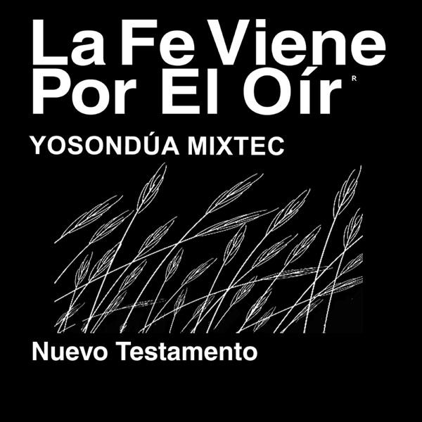 Yosondúa Mixtec Biblia (no dramatizada) - Mixteco de Santiago Yosundua Bible (Non-Dramatized)