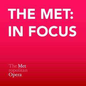 The Met: In Focus