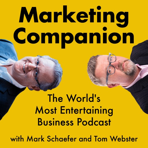 Cover image of The Marketing Companion