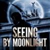 Seeing by Moonlight artwork