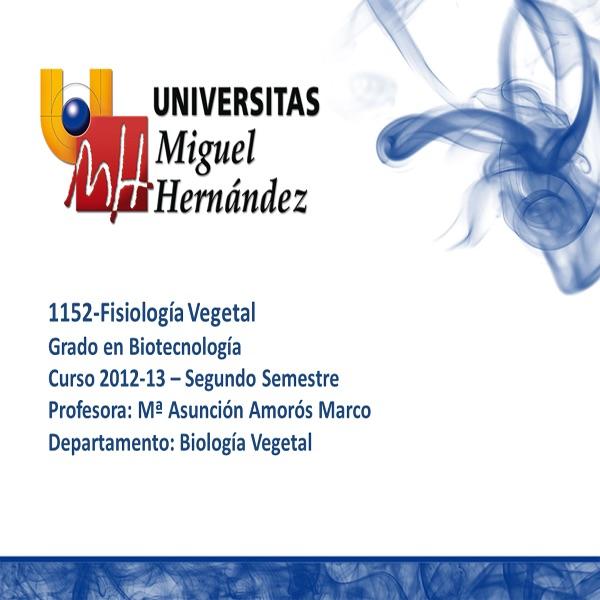 Fisiología Vegetal (umh1152) Curso 2012 - 2013