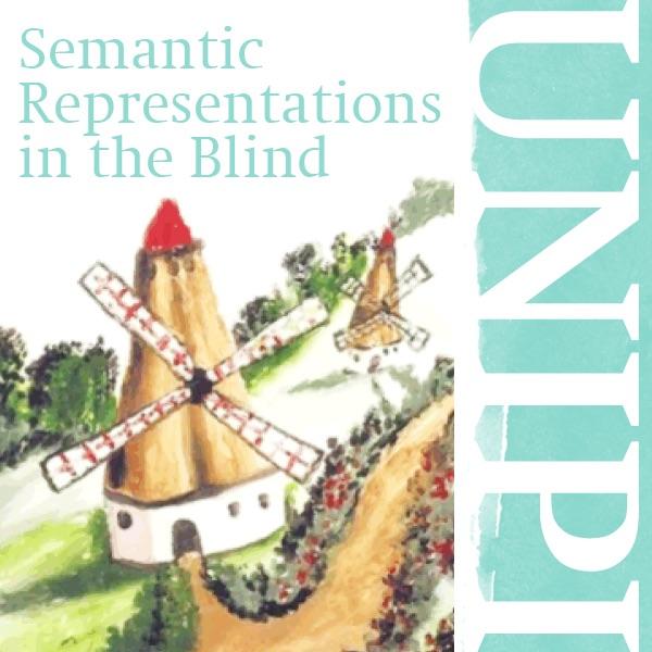 Semantic Representations in the Blind
