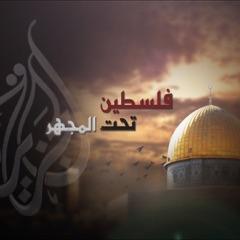 فلسطين تحت المجهر