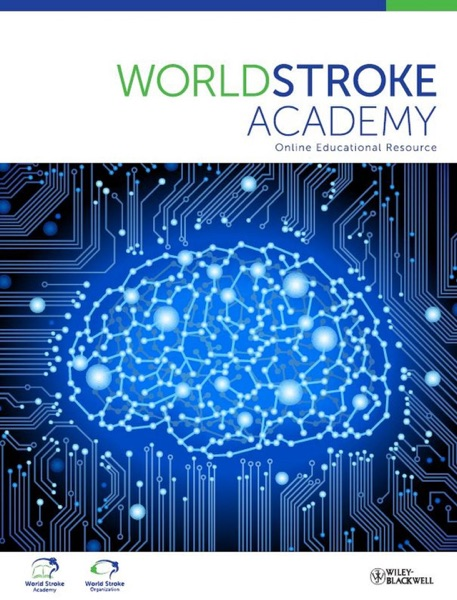 World Stroke Academy, Control of Hypertension for Prevention of Stroke