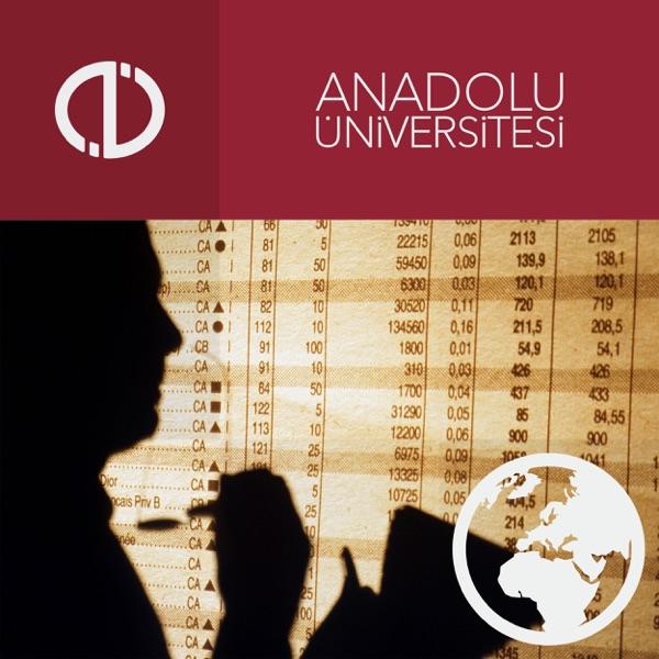 Finansal Tablolar Analizi (2012-2013)