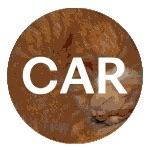 CAR_rca