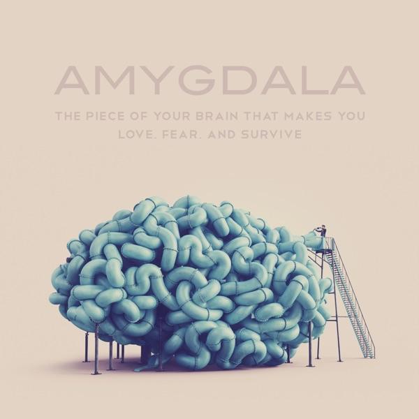 Amygdala Magazine
