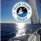 Ocean Sailing Podcast