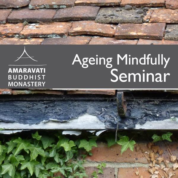 Ageing Mindfully Seminar 2012