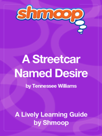 A Streetcar Named Desire book