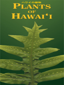 Plants of Hawai'i