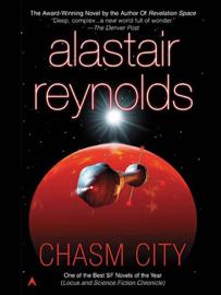 Chasm City book