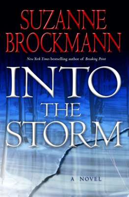 Suzanne Brockmann - Into the Storm book