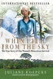 When I Fell from the Sky book