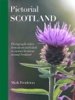 Mark Pentleton - Pictorial Scotland  artwork