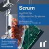 Thomas Wüst - Scrum - Agilität für dynamische Systeme Grafik