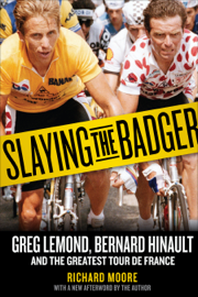 Slaying the Badger book