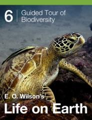 E. O. Wilson's Life on Earth Unit 6