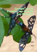 Zoologie und die Evolution vom Einzeller zum Menschen