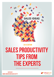 Sales Productivity Tips from the Experts 2014 Edition book
