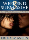 Weekend Submissive 3