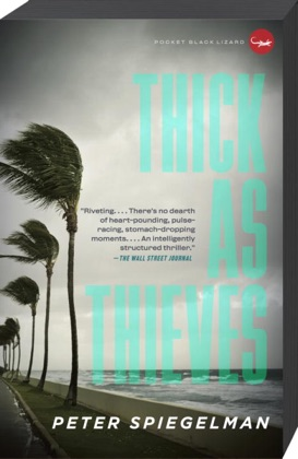 Thick as Thieves image