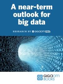 A Near Term Outlook For Big Data
