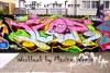 Graffiti on the Fence - workbook
