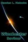 Winchester Saviour