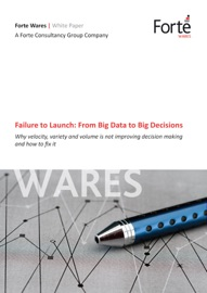 Failure To Launch From Big Data To Big Decisions