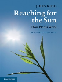 REACHING FOR THE SUN: SECOND EDITION