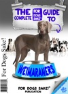 The Complete Guide To Weimaraners