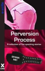 Perversion Process PDF Download