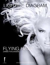 Flying Hair Lighting Diagram