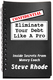 Eliminate Your Debt Like a Pro book