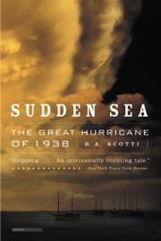 Sudden Sea