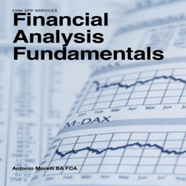 Financial Analysis Fundamentals