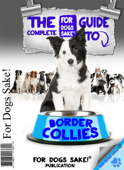 The Complete Guide to Border Collies