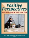Positive Perspectives