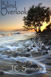 Blind Overlook book