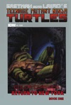 Teenage Mutant Ninja Turtles Color Classics Vol 2 5