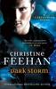 Christine Feehan - Dark Storm artwork