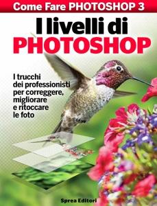 I livelli di Photoshop Book Cover