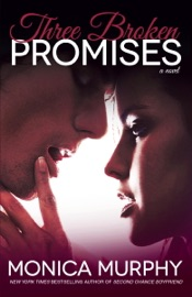 Three Broken Promises PDF Download