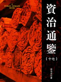 资治通鉴 (十七) book