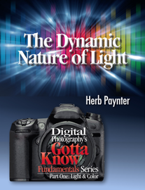 The Dynamic Nature of Light