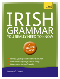 Irish Grammar You Really Need to Know: Teach Yourself book