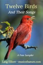 Twelve Birds And Their Songs