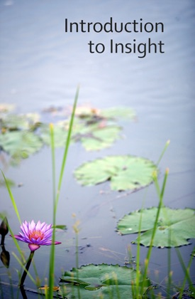 Introduction to Insight Meditation image