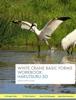 White Crane Basic Forms Workbook